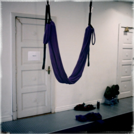 FlyGym workshop! (Agnetas blogg)